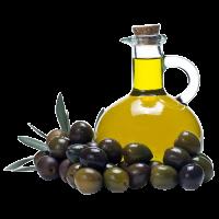купить оливковое масло